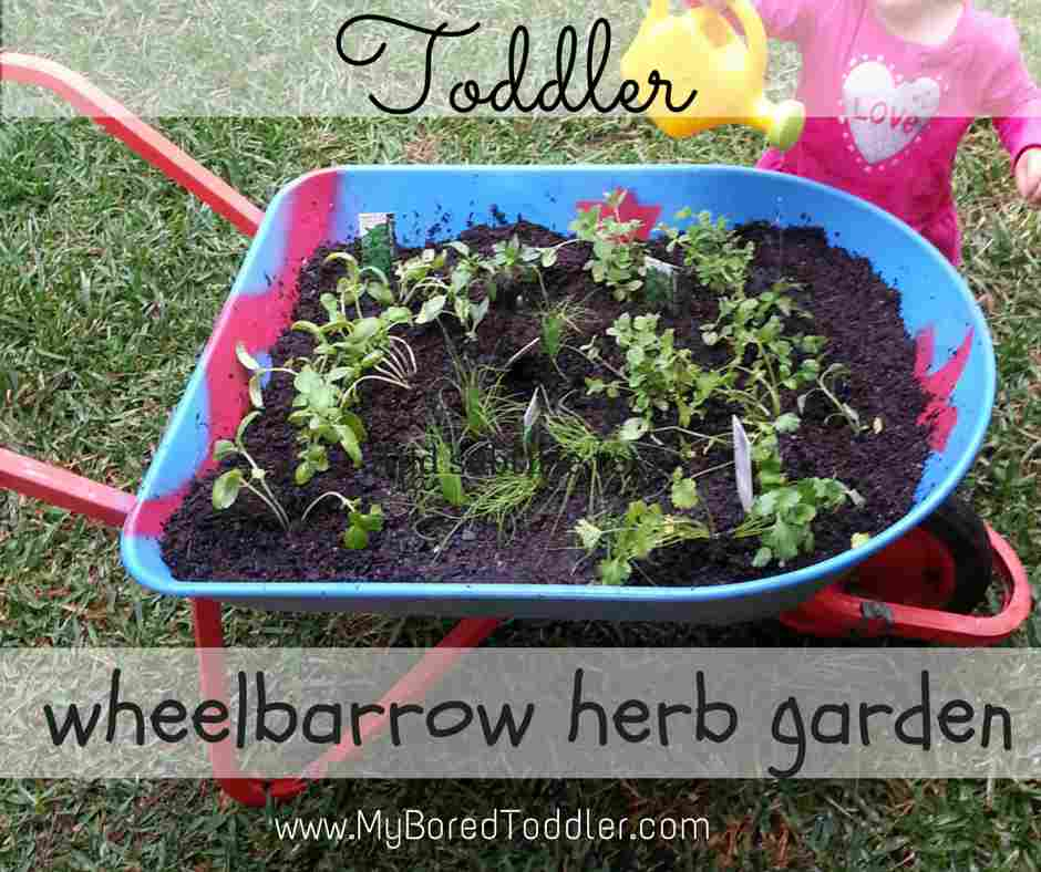 Gardening with kids – Wheelbarrow herb garden