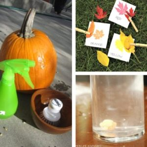 autumn and fall sensory play for toddlers image 15