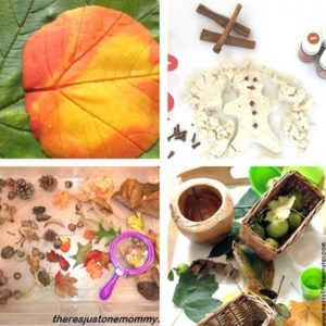 autumn and fall sensory play for toddlers image 7
