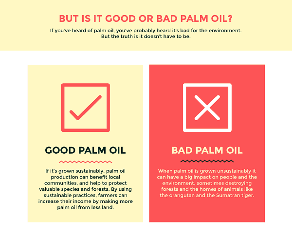 good-v-bad-palm-oil