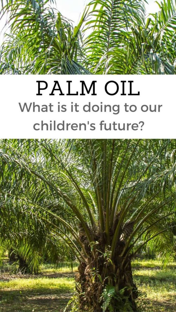 palm-oil-good-vs-bad-pinterest