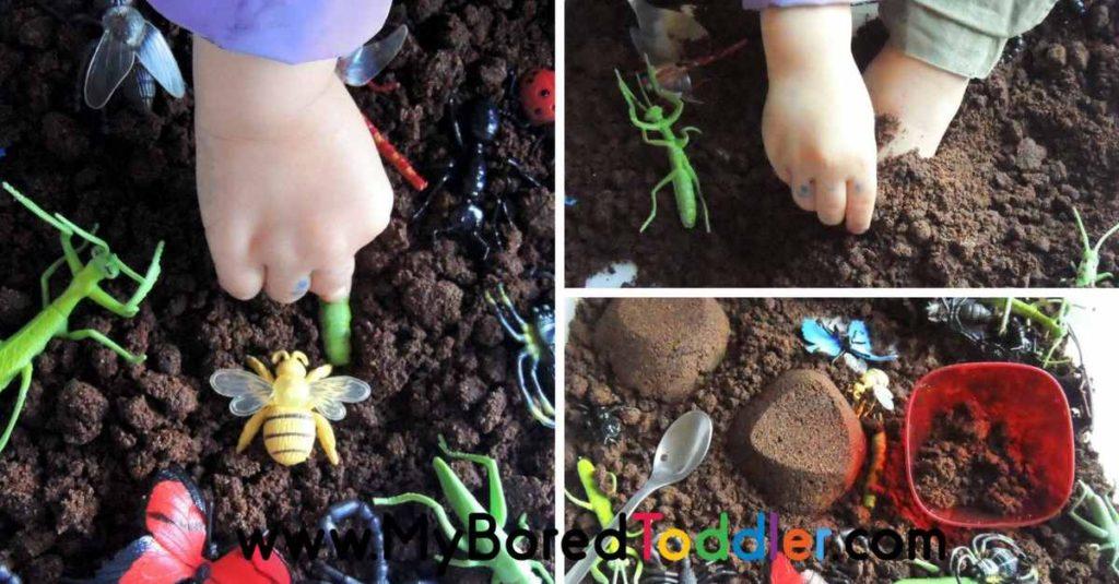 Insects Sensory Bin – Taste Safe