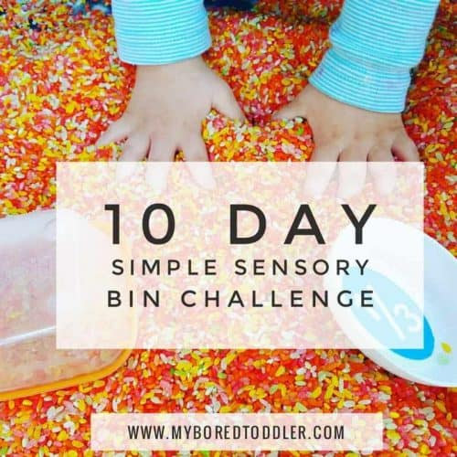 Sensory Bin Challenge Day 10