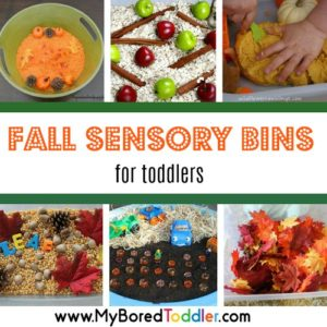 Autumn and Fall Sensory Bins for Toddlers