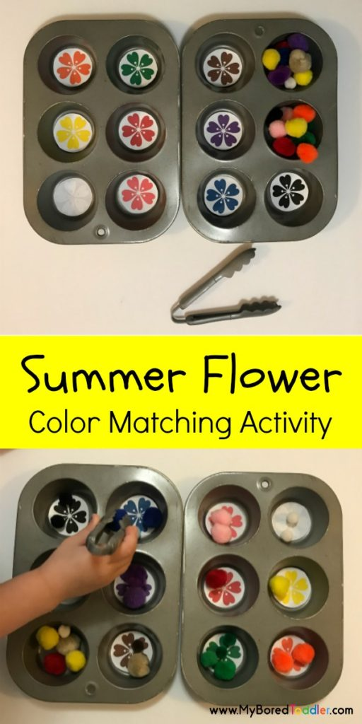 summer flower color matching activity