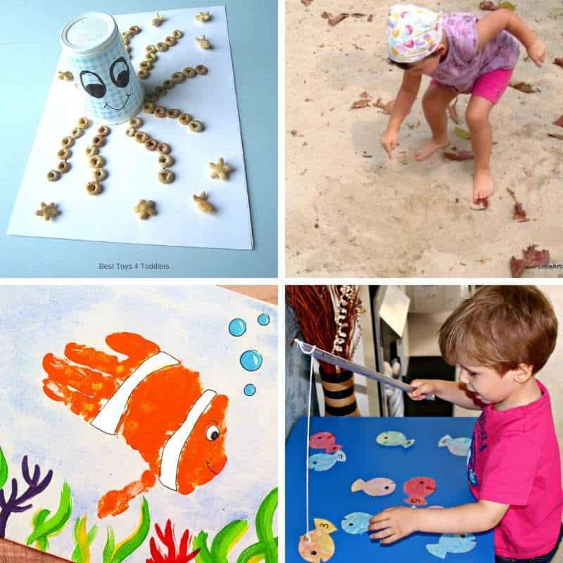 activities with sea and ocean animals
