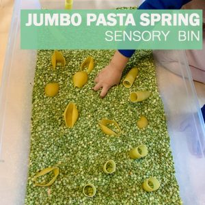 jumbo pasta spring sensory bin pinterest