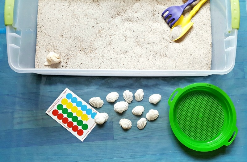Supplies for a seashell sensory bin activity