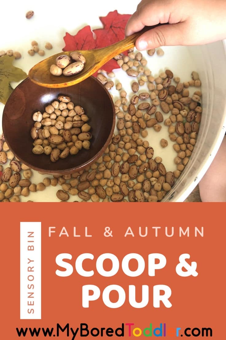 Autumn and fall scoop and pour sensory bin pinterest