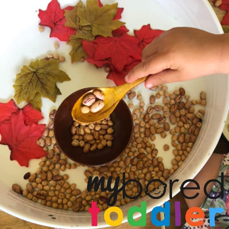 Autumn sensory bin scooping and pouring image 5