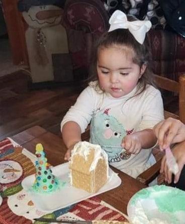 cynthia steele gingerbread house