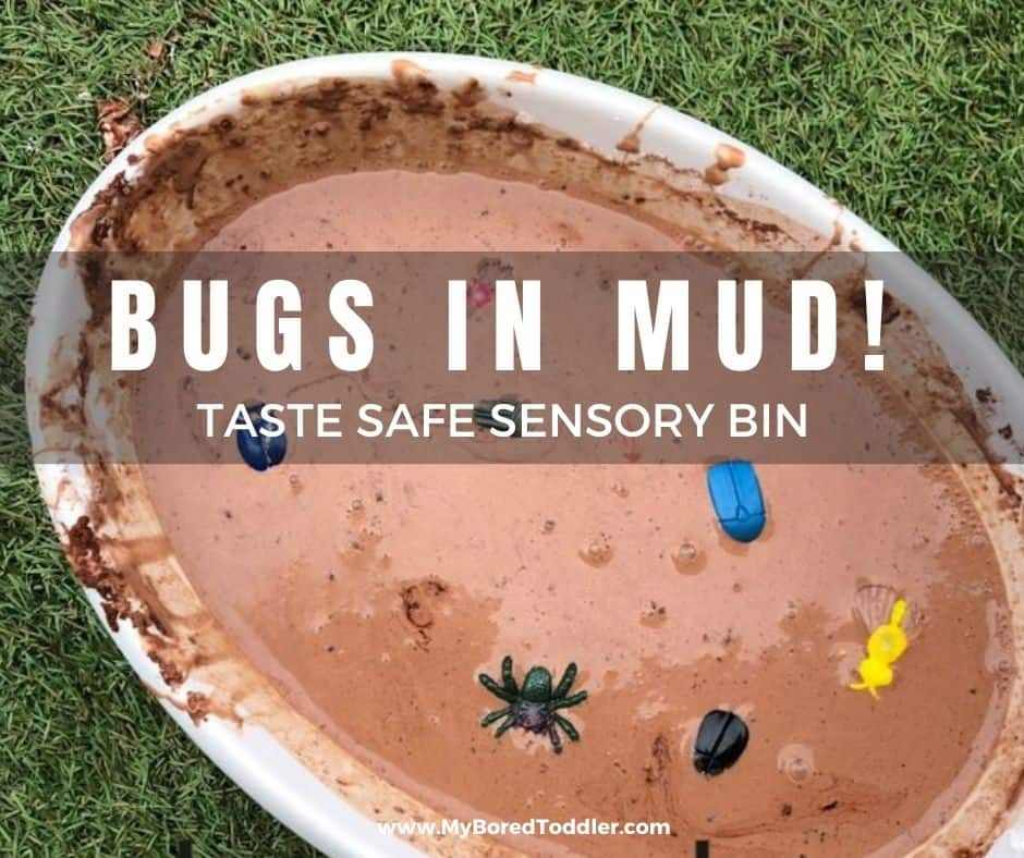 bugs in mud tasate safe sensory bin