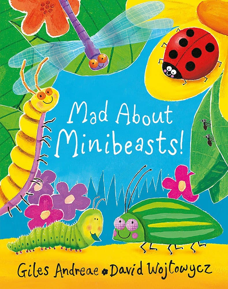 mad about minibeasts book