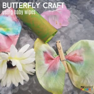 butterfly craft using baby wipes instagram